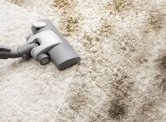 Drying your Carpet Faster